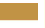 biO2 Logo Bege